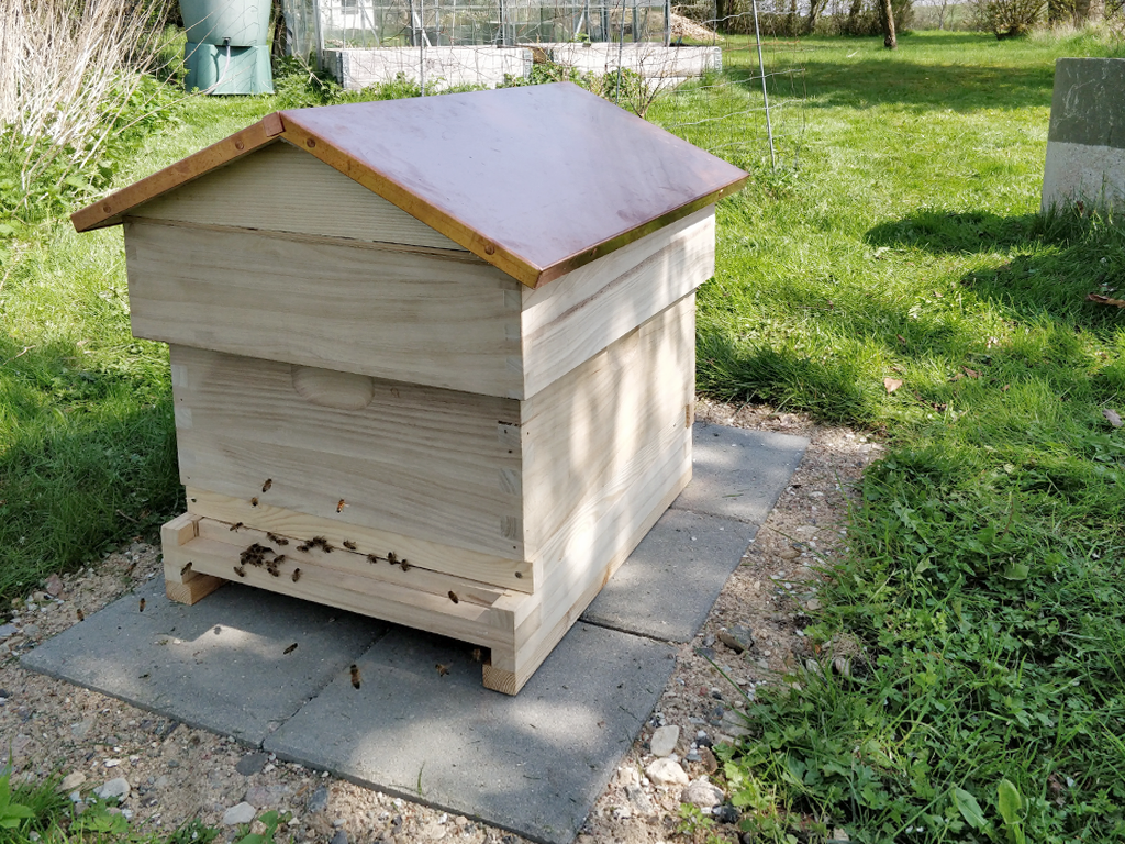 Ny bigård med aktive bier